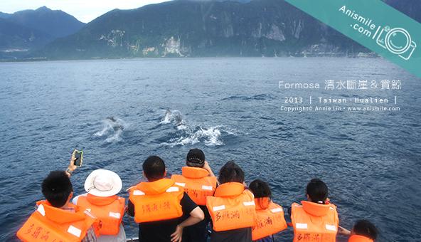 formosa 多羅滿賞鯨